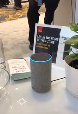 still shot of the Amazon Echo at the Witlingo display at CES with a little sign about voice-first and a booklet about using Alexa for your business